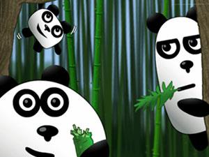 3 Pandas Travelers